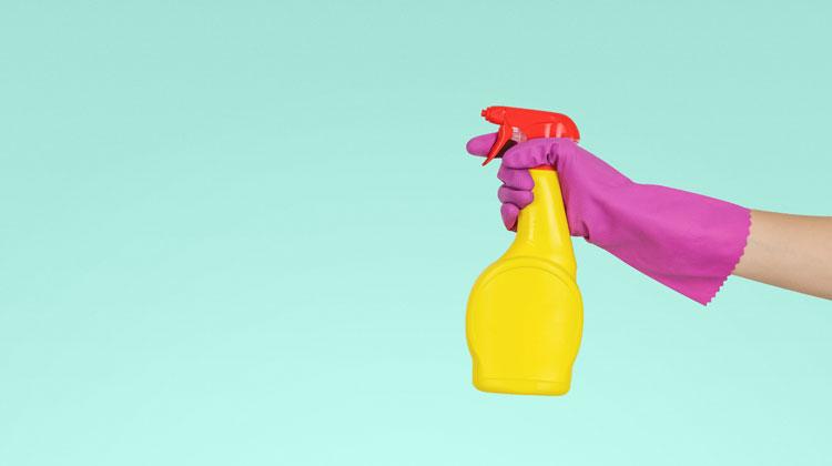 Spray z detergentem trzymany w ręcew gumowej rękawicy