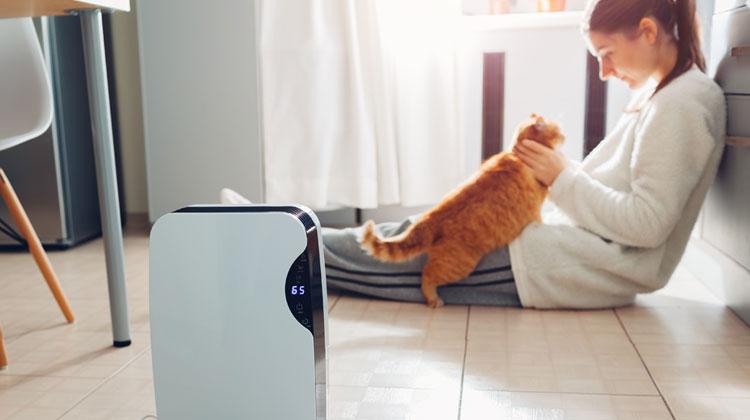 Dziewczyna siedzi w kuchni na podłodzie i bawi się z rusym kotem. Na pierwszym planie oczyszczacz powietrze